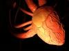 cuoresito02-web